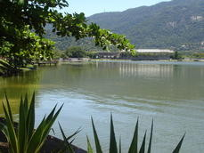 Lagoa RODRIGO de FREITAS.