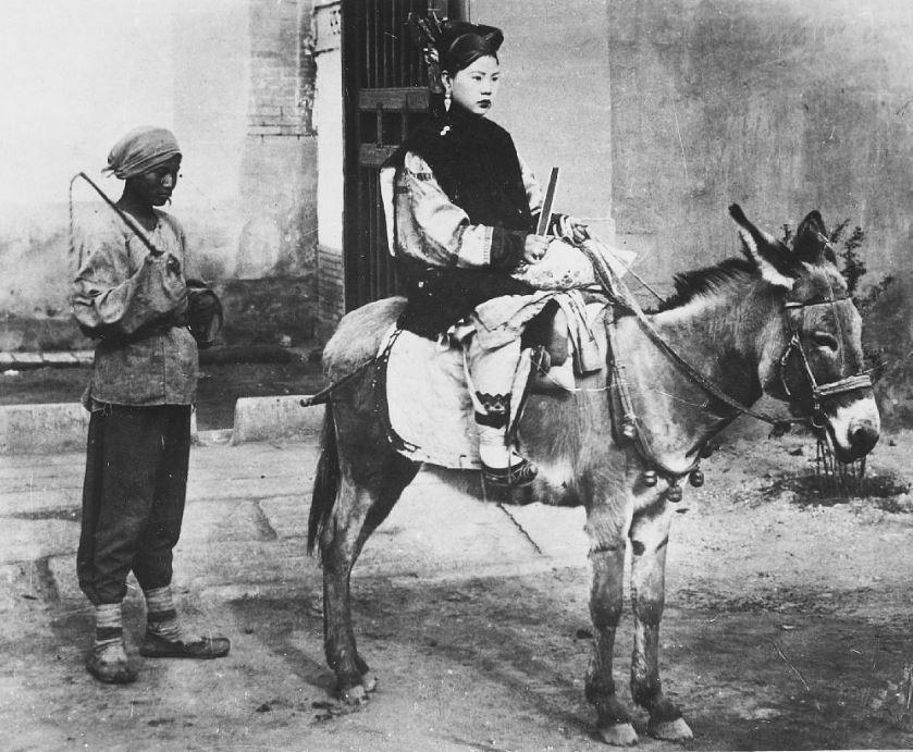 310. — Transport à âne employé surtout par les femmes aux petits pieds. L'ânier reste toujours avec sa bête.