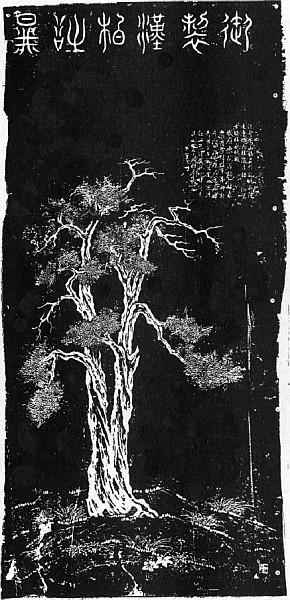 Thuyas. Édouard CHAVANNES (1865-1918) : Le T'ai chan. Essai de monographie d'un culte chinois