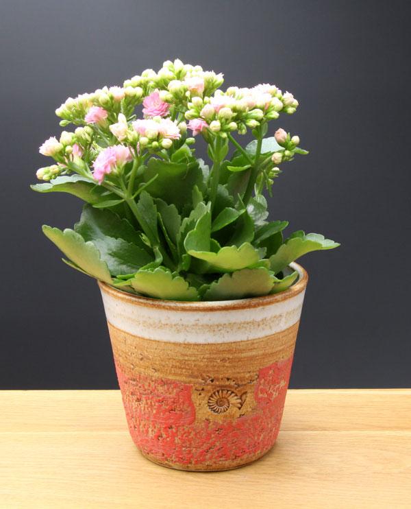Keramik Übertopf, Dekor Granatapfel, ø oben ca. 13,5 cm, h ca. 12 cm
