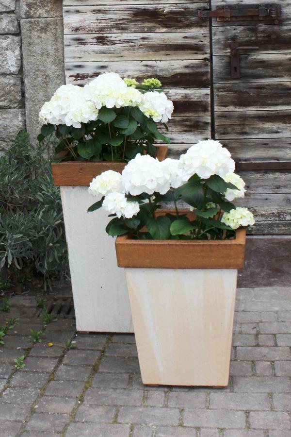 Keramik frostfest, Pflanzkübel zum direkt bepflanzen oder als Übertopf,  Maßanfertigung möglich