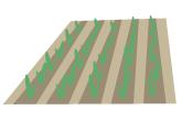 【めぐみの里】農場