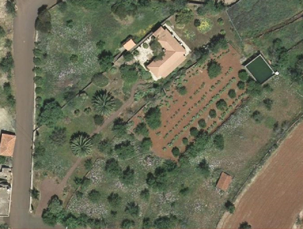 Aerial view the hole finca with whine, almond trees, pajero, terrace