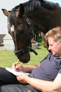 Sehr clveres Pferd ....er kann lesen....Sandro