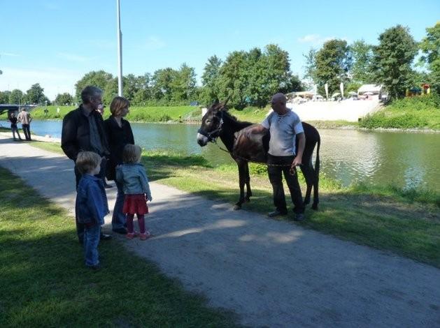 Hafenfest Hamm 2010  Esel reiten