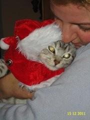 Burschi als Weihnachtself