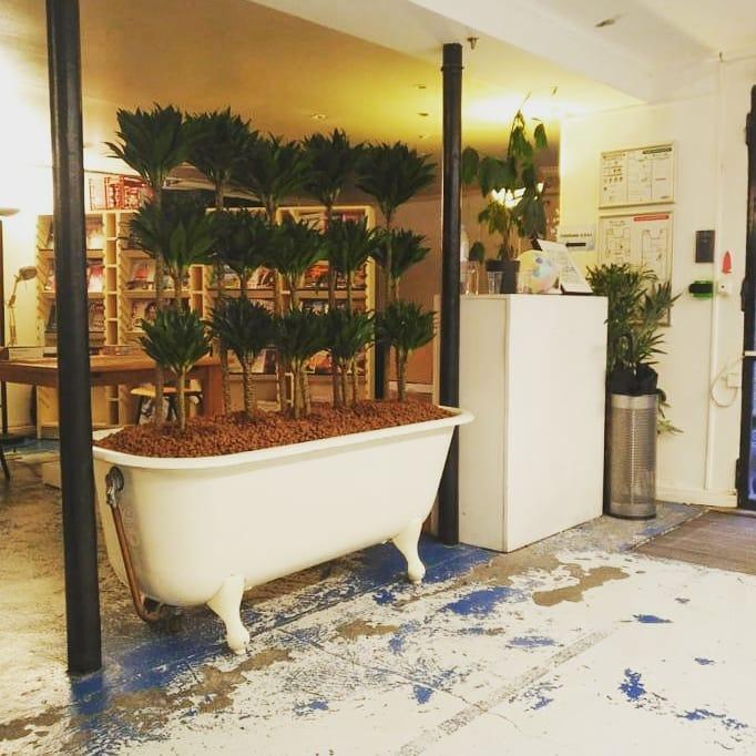 Paysagiste d'intérieur: Transformation de cette baignoire en jardinière XXL pour cet espace de coworking parisien