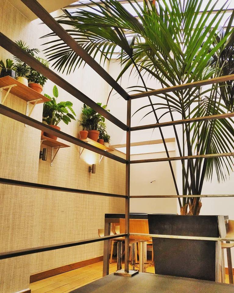 Entretien de plantes pour vos bureaux à Paris