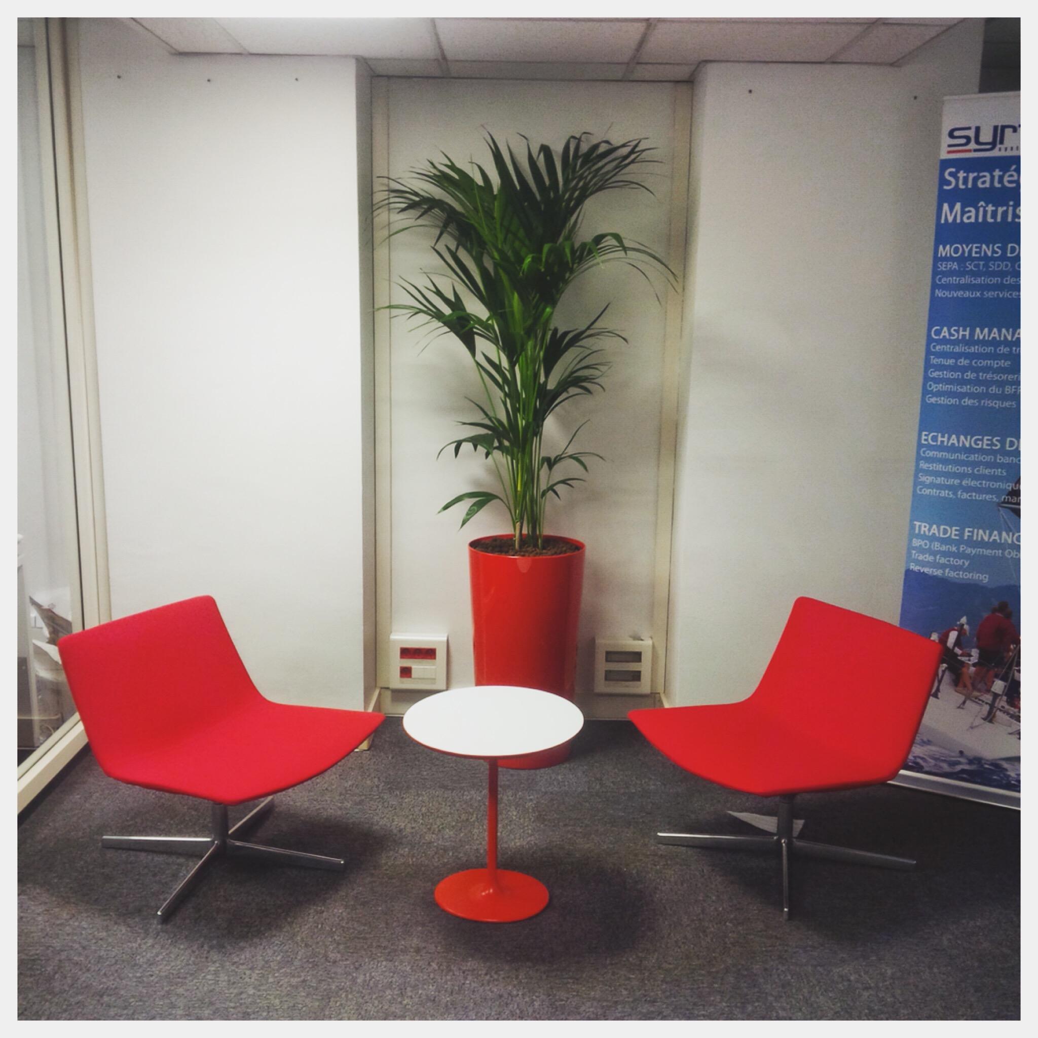 Paysagiste d'intérieur: location de plantes pour les bureaux d'une entreprise à Paris XVème
