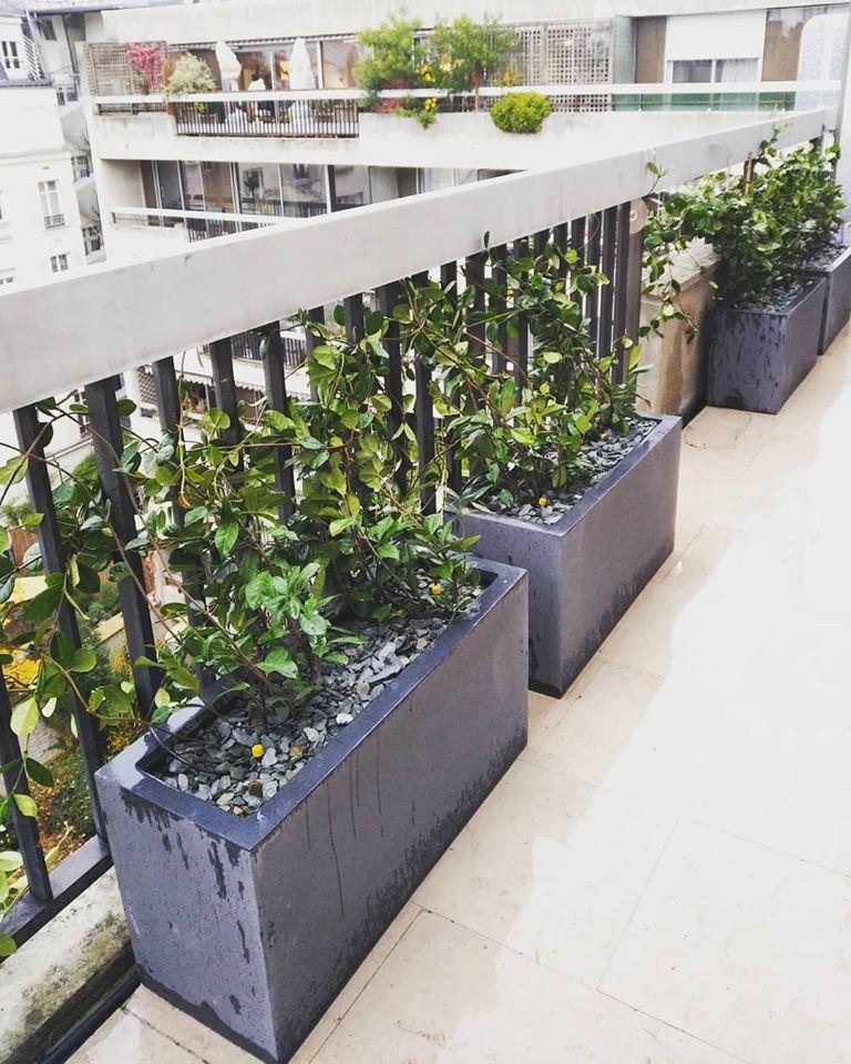 Aménagement végétal de cette terrasse