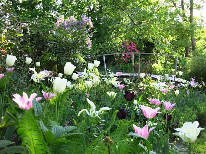 Helenenweg-Garten im Frühjahr
