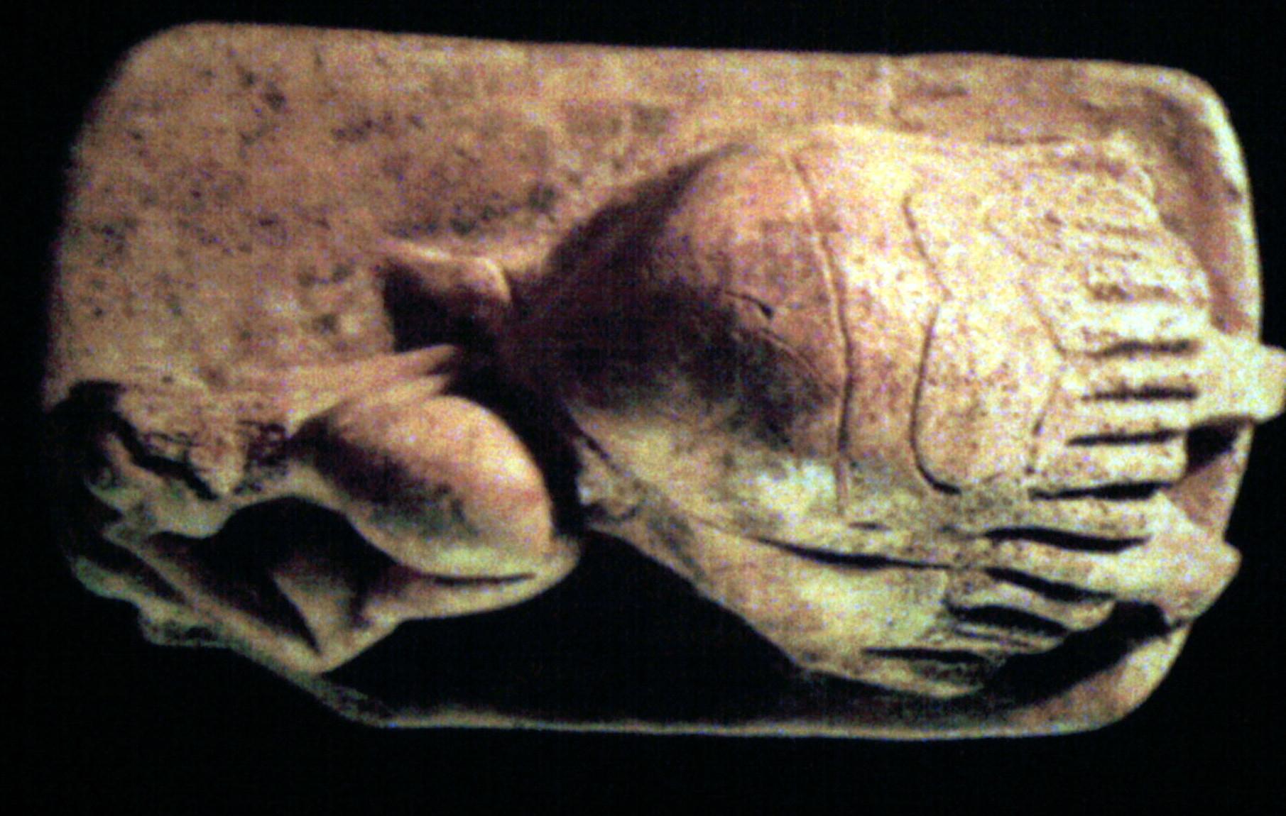 Sleeping Lady .... Women make history