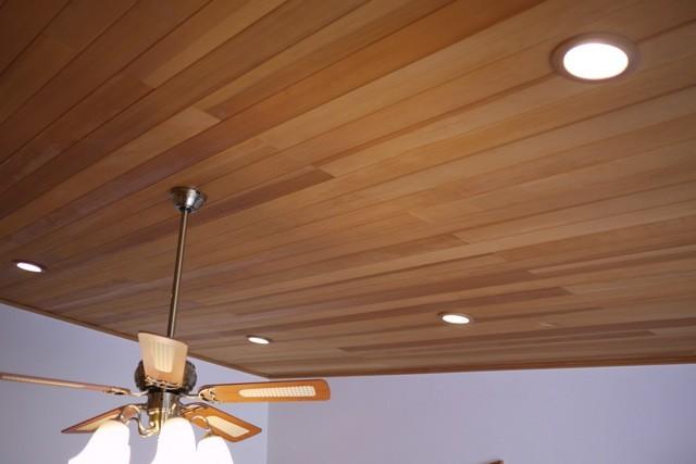 珍しいアガチスの天井。こんな使い方もできる  撮影協力:茨城木工(株)