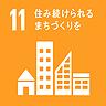 SDGs category 11