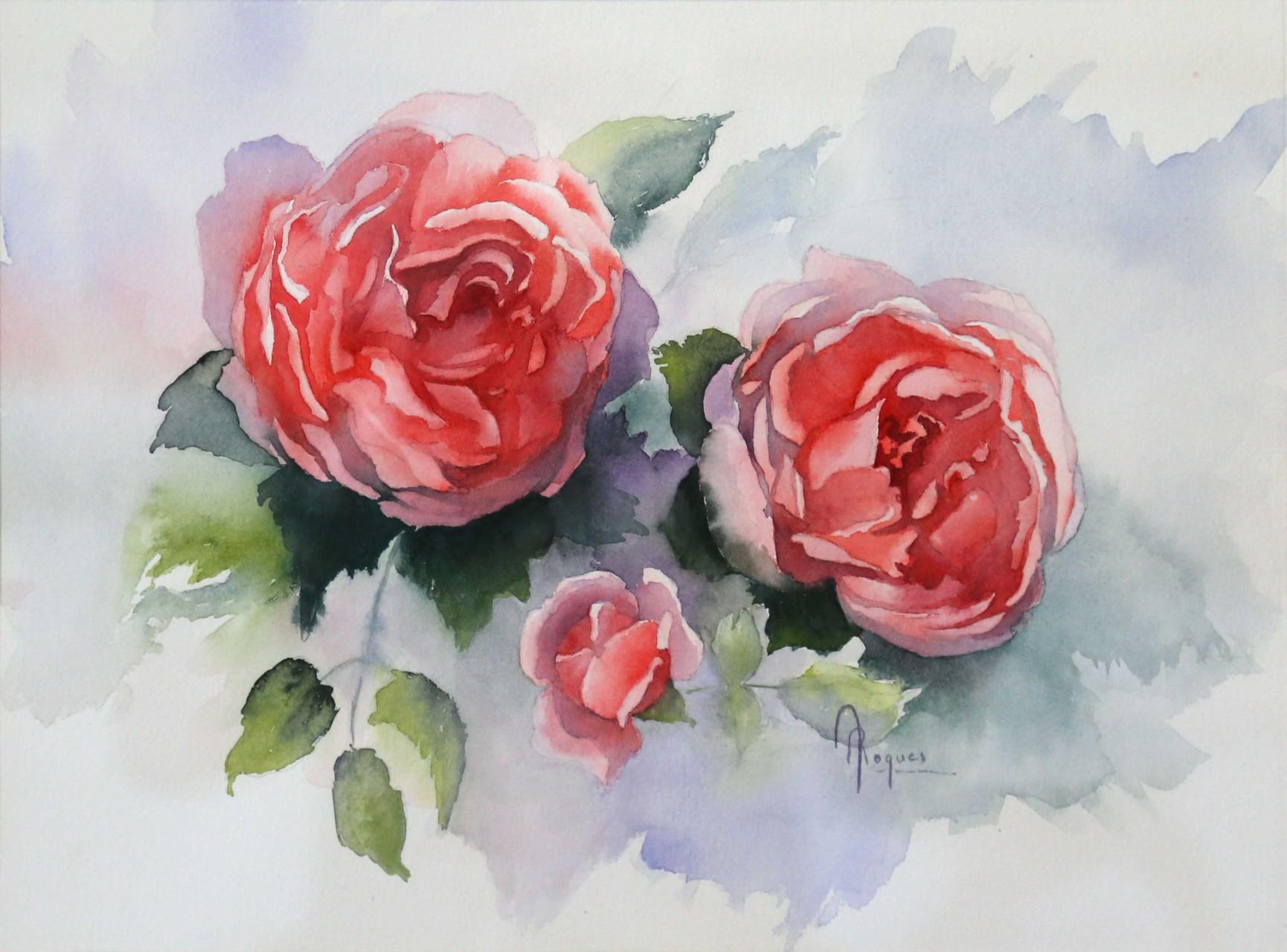 Roses senteurs
