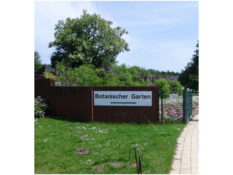 Der Botanische Garten.