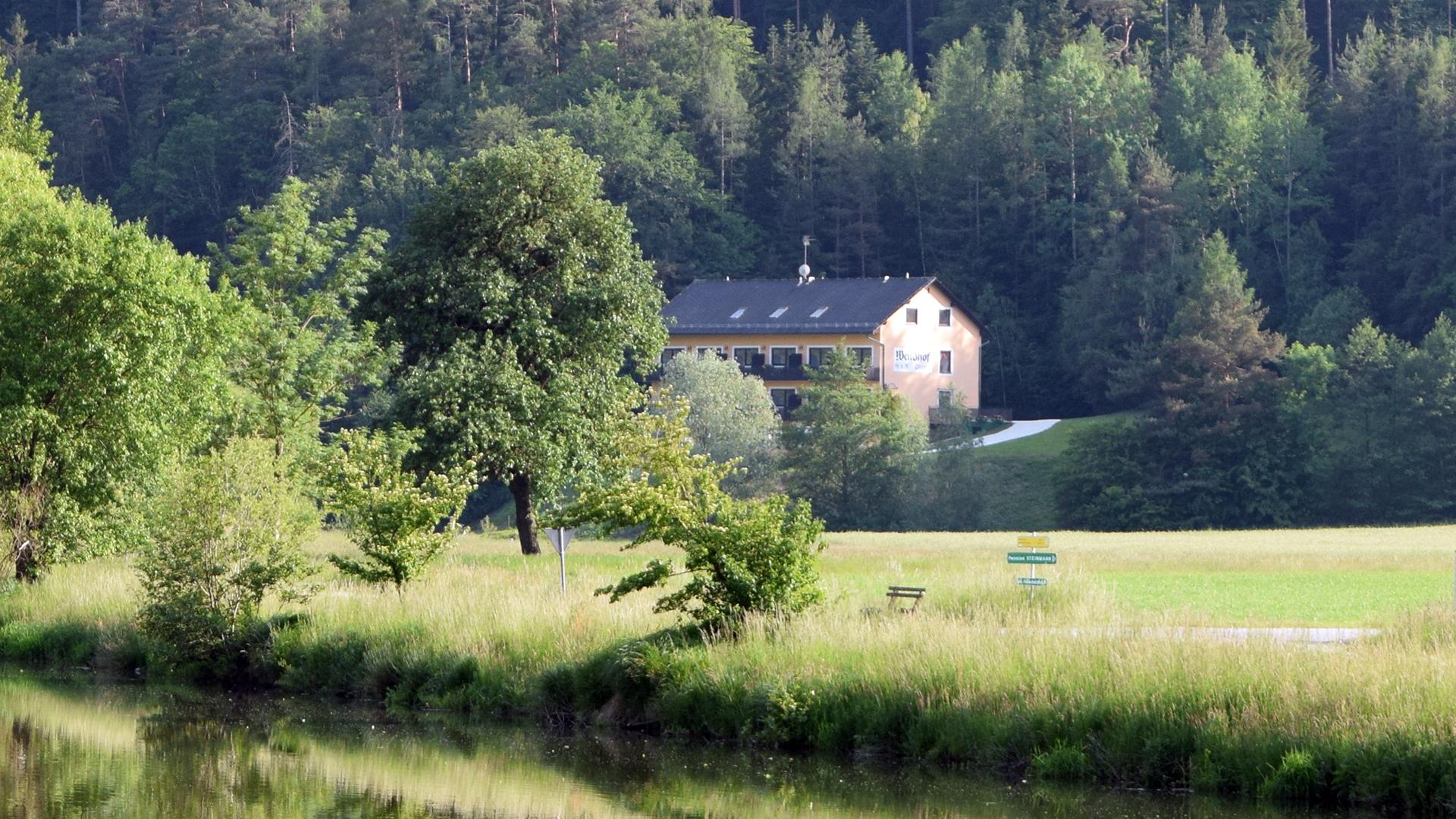 ... liegt direkt am Wald, nahe des Stubenbergsees.
