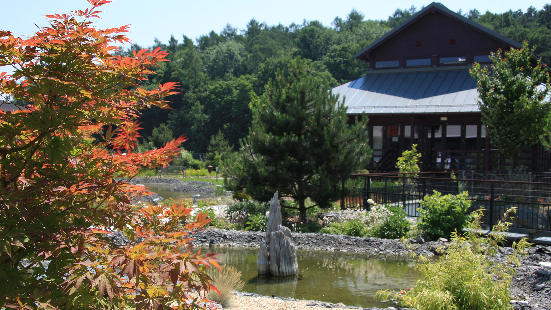 Relaxen im Zen-Garten.