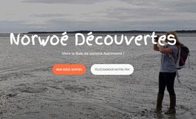 traversée-baie-somme-moule-norwe-decouverte-observation-phoque-somme-marquenterre