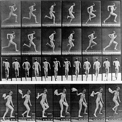 Eadweard Muybridge, Bewegungsakte
