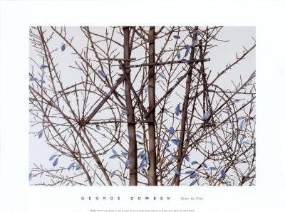 "George Dombek (*1944), bicycle tree ""Tour de Tree"" 2008 Aquarell"