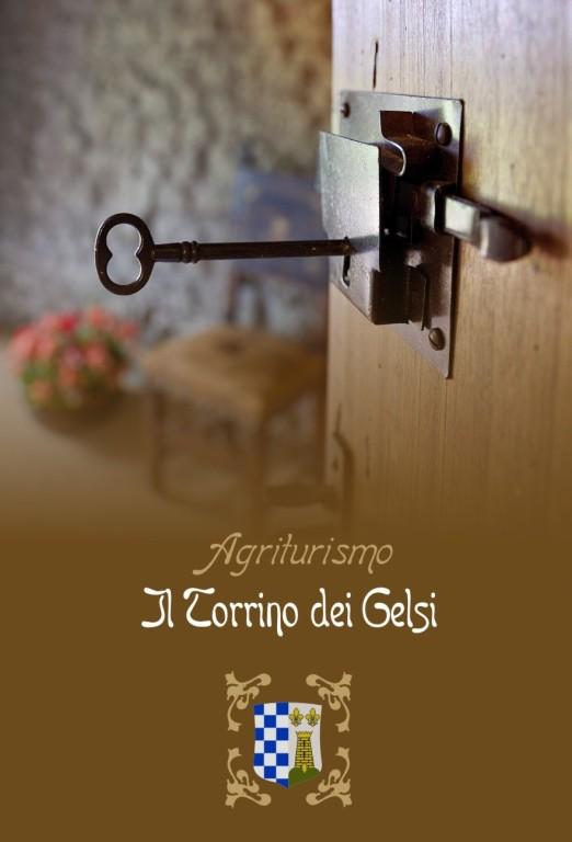 """Azienda Agricola """"il Torrino dei Gelsi"""" - 2009 - Copertina brochure"""