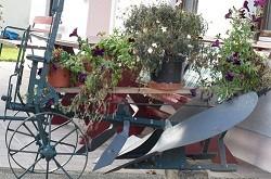 Ein alter Pflug, der zweckentfremdet als Blumenkiste dient.