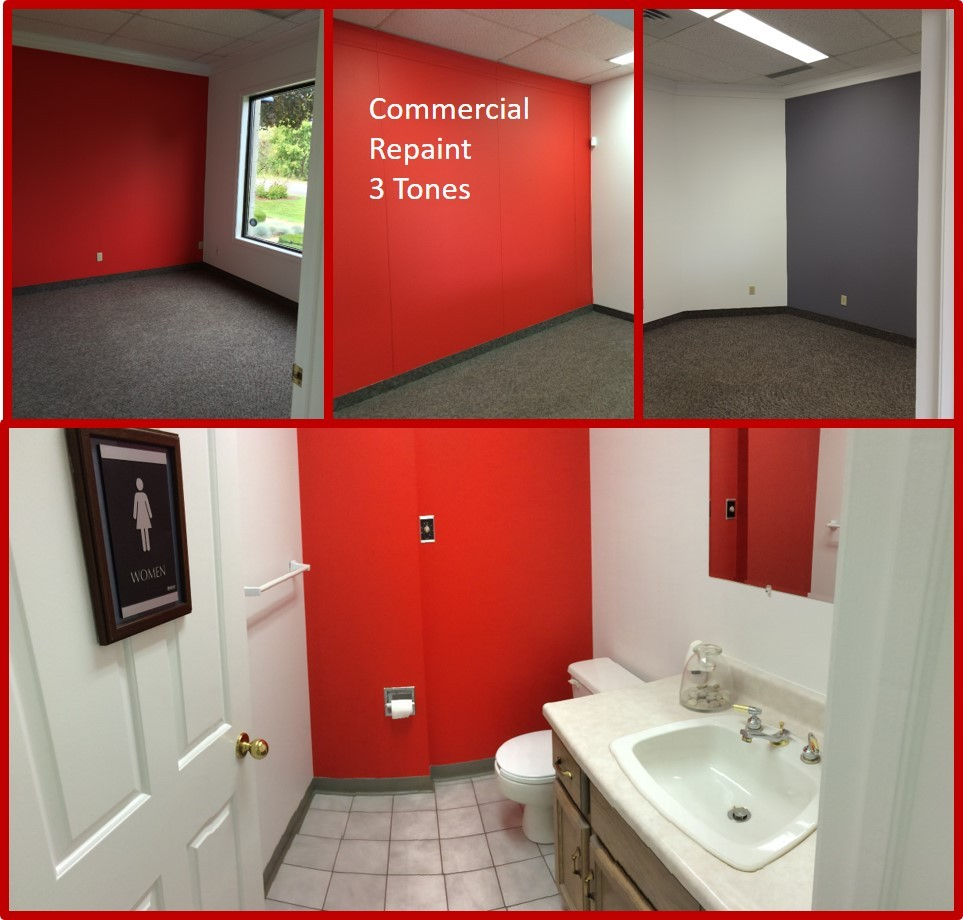 Commercial Office Repaint