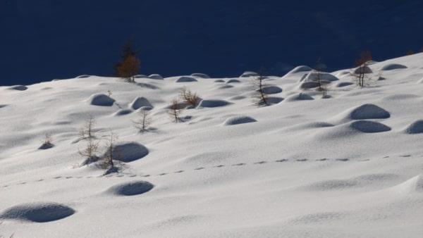 rando sortie balade aventure nature raquette à neige villard briançon puy saint pierre chantemerle la salle les alpes du sud