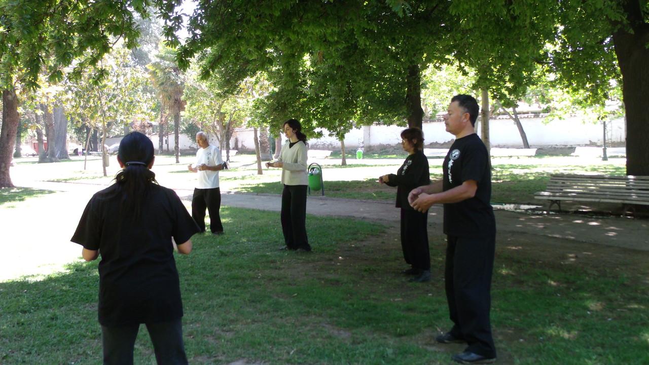 Practica de Zhanzhuang