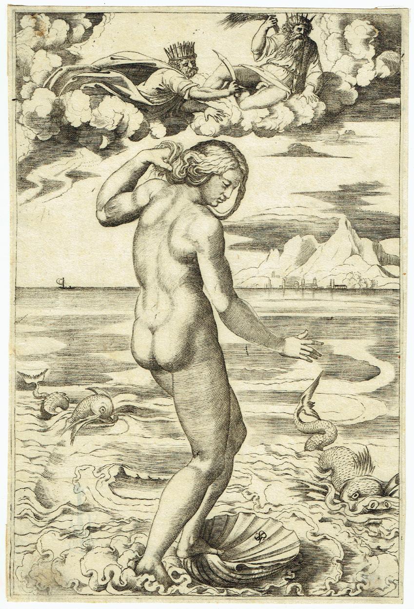 Marco Dente, Die Geburt der Venus
