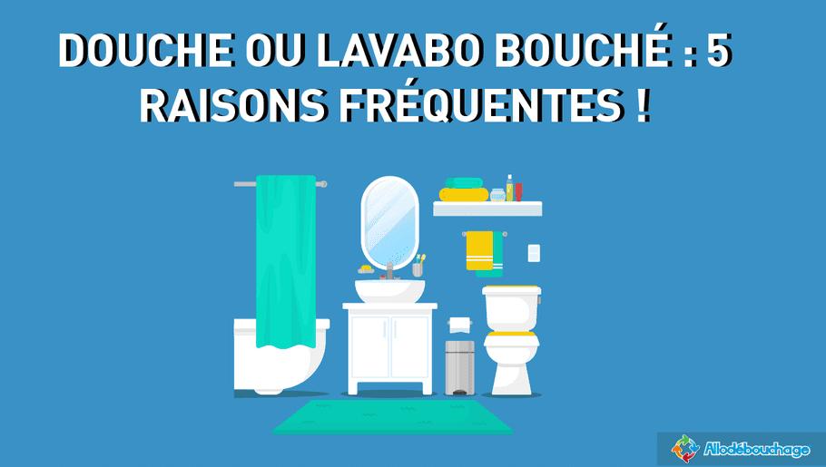 douche ou lavabo bouché : 5 raisons fréquentes