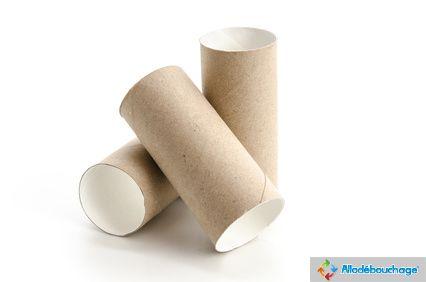 WC bouché par un rouleau de papier biodégradable
