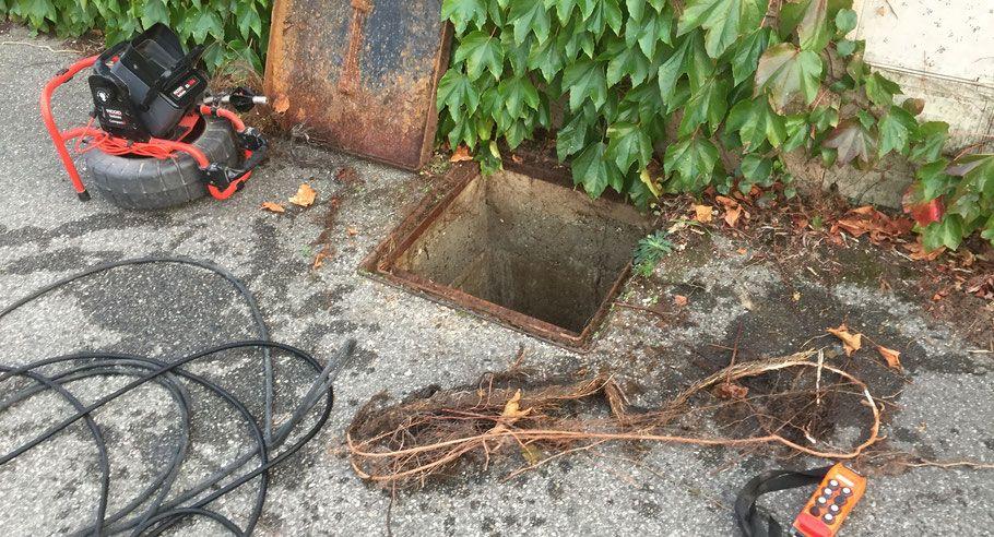 Intervention canalisation bouchée par racines Allo Débouchage
