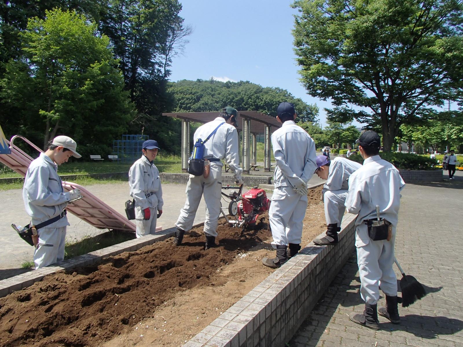 ミニ耕うん機を使用して、土を柔らかくします。