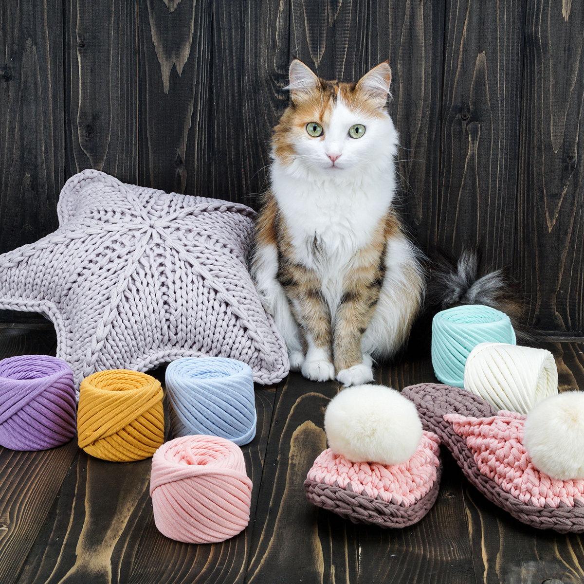 кошка в качестве модели - фото для Амазон