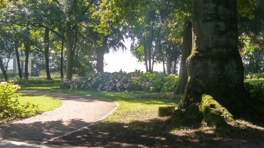 heinepark an der elbchaussee, rasenfläche, bäume, blumenbeet