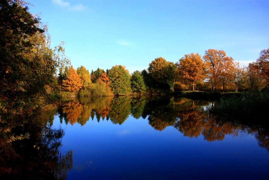 Der Teich mit einer schönen Herbstlichen Umrandung