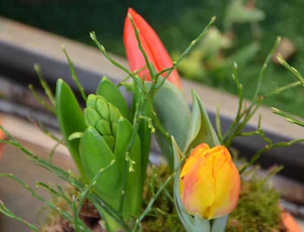 Vielleicht liegt es ja auch daran, dass nun endlich wieder ein Hauch von Frühling zu spüren ist.
