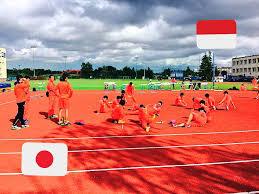 国際大会 - team-hayashiのJimdo...