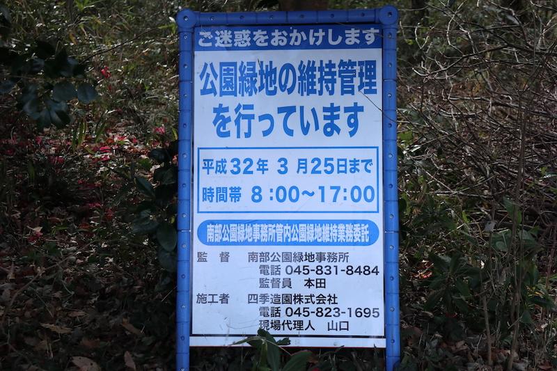 横浜 線 倒木