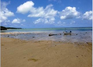 このビーチでクリーンアップします!
