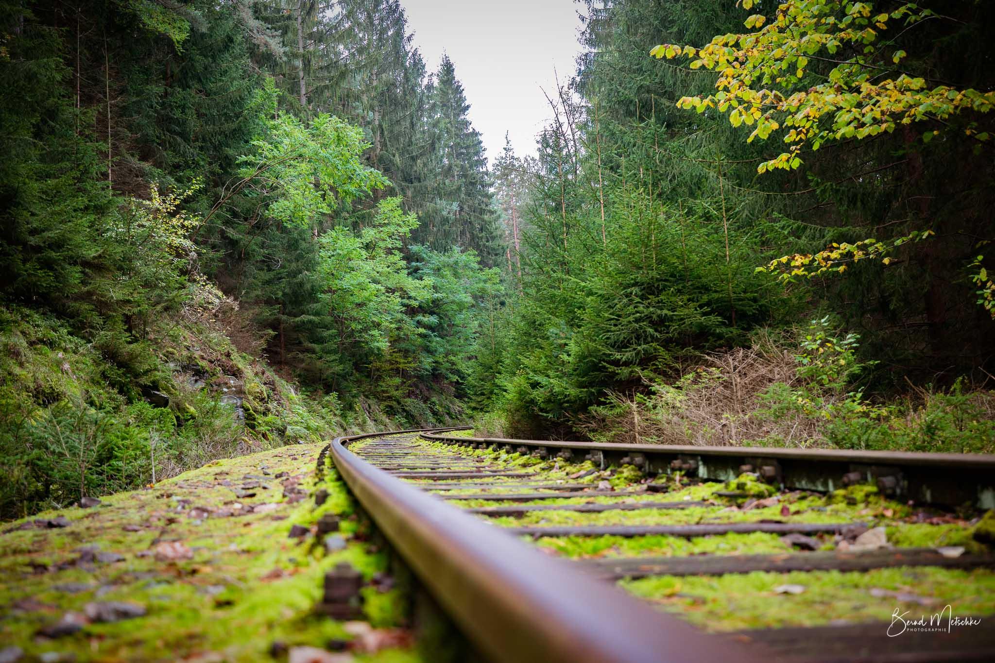 Bahnwanderweg rund um die Ziemestalbrücke
