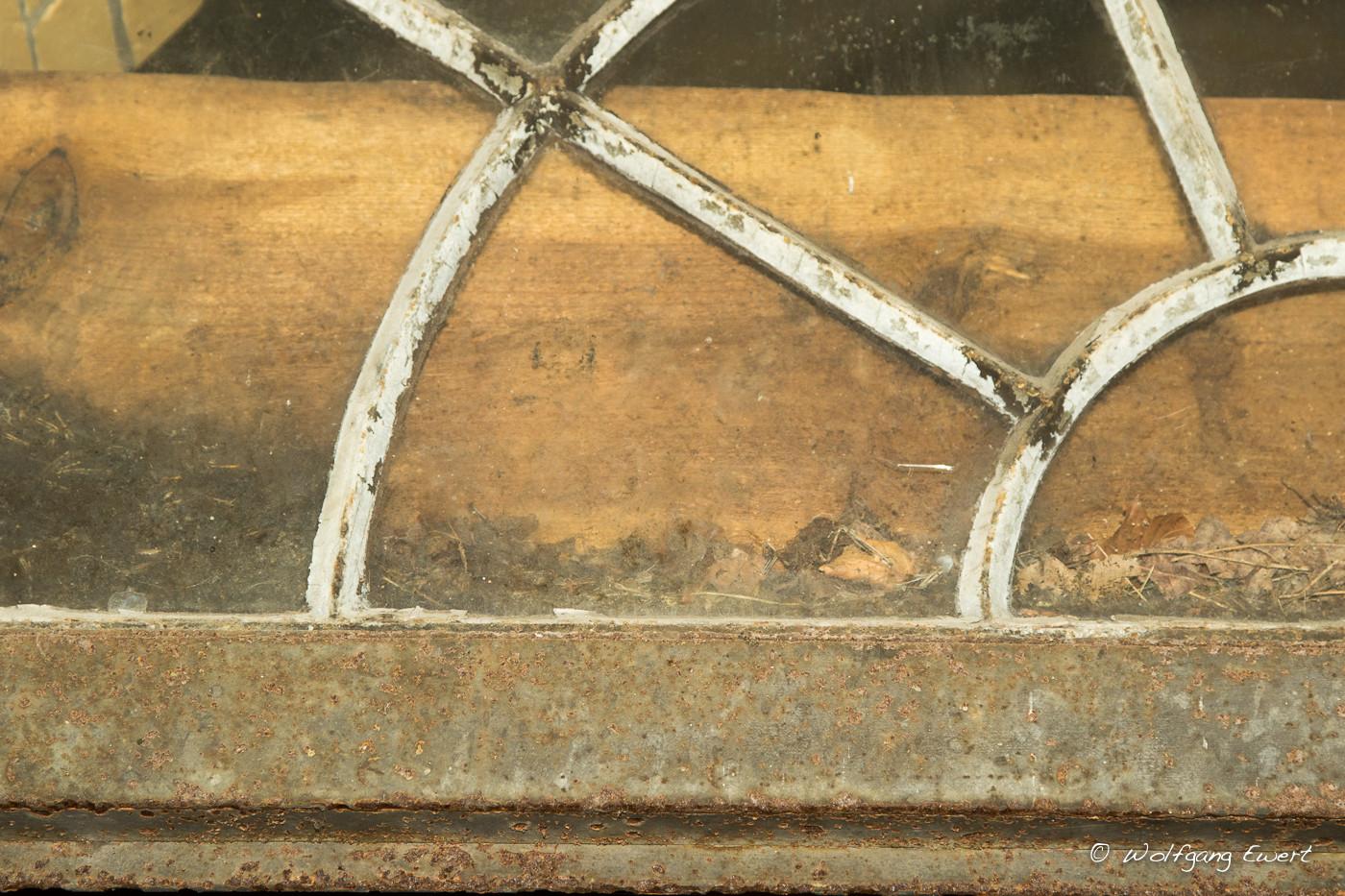 Jubiläumsfontaine - Fledermausskelett-Teile hinter Glas- Foto: Wolfgang Ewert