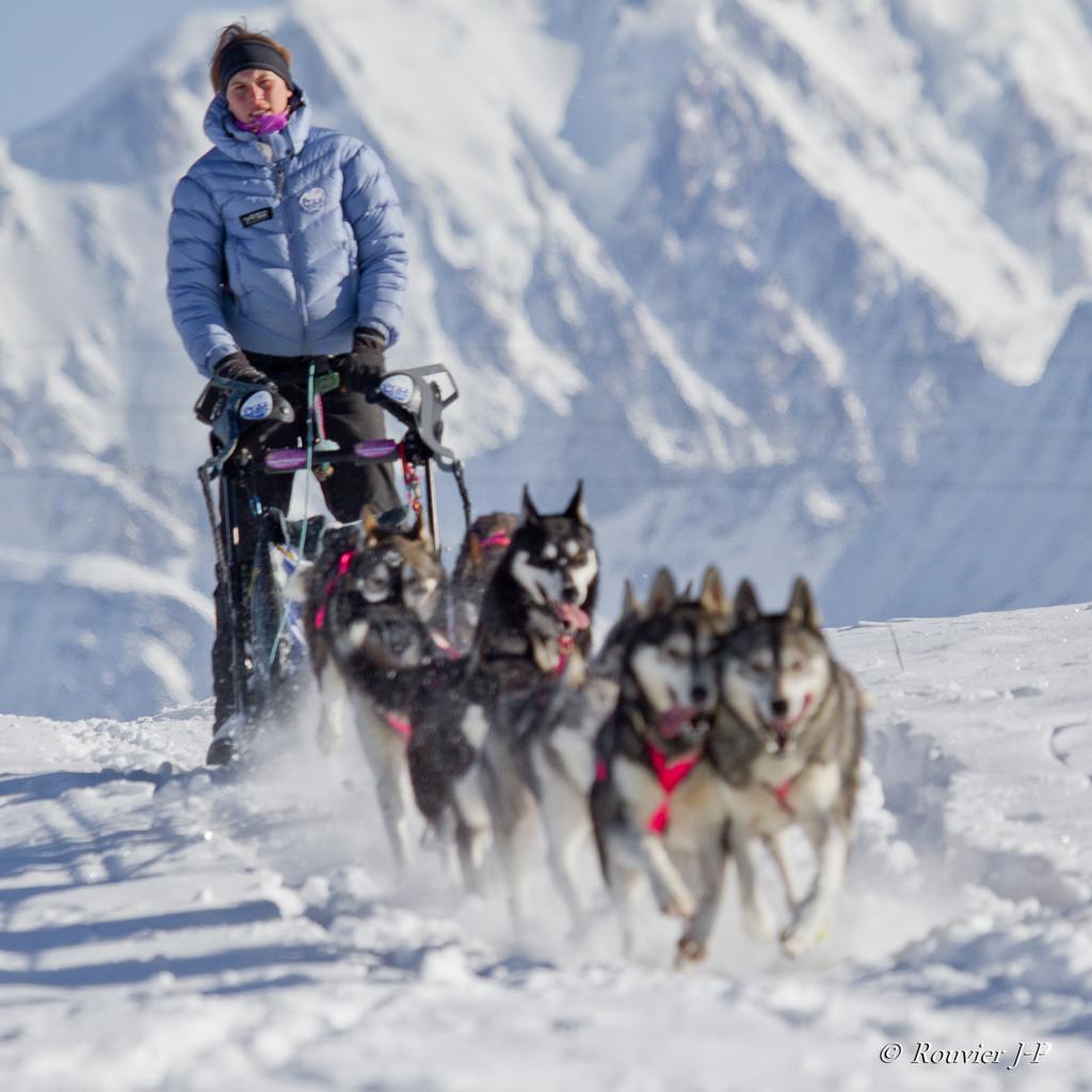 Le Mont-Blanc en arrière plan