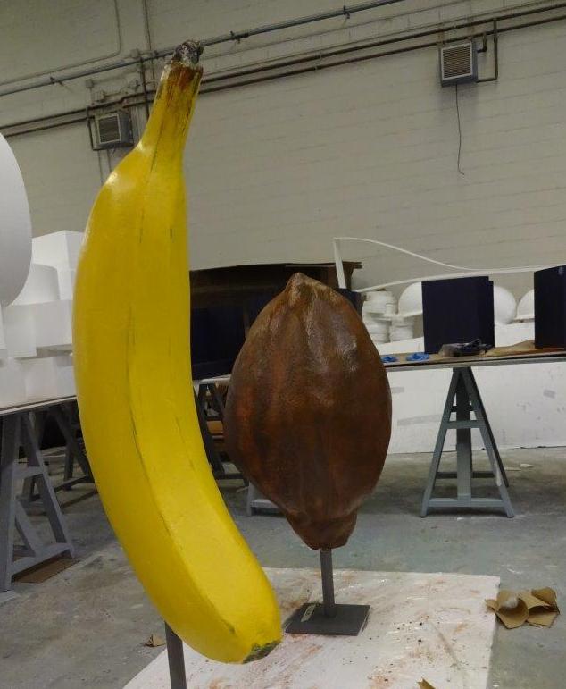Platano gigante, Cacao Gigante