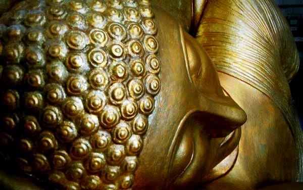 Cabeza de Buda Gigante
