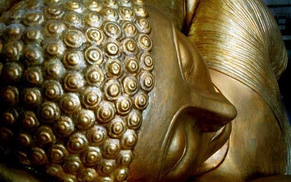 Buda, talla XXL