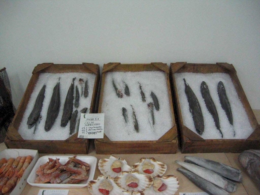 Cajas de Pescado a media escala, Ficticios