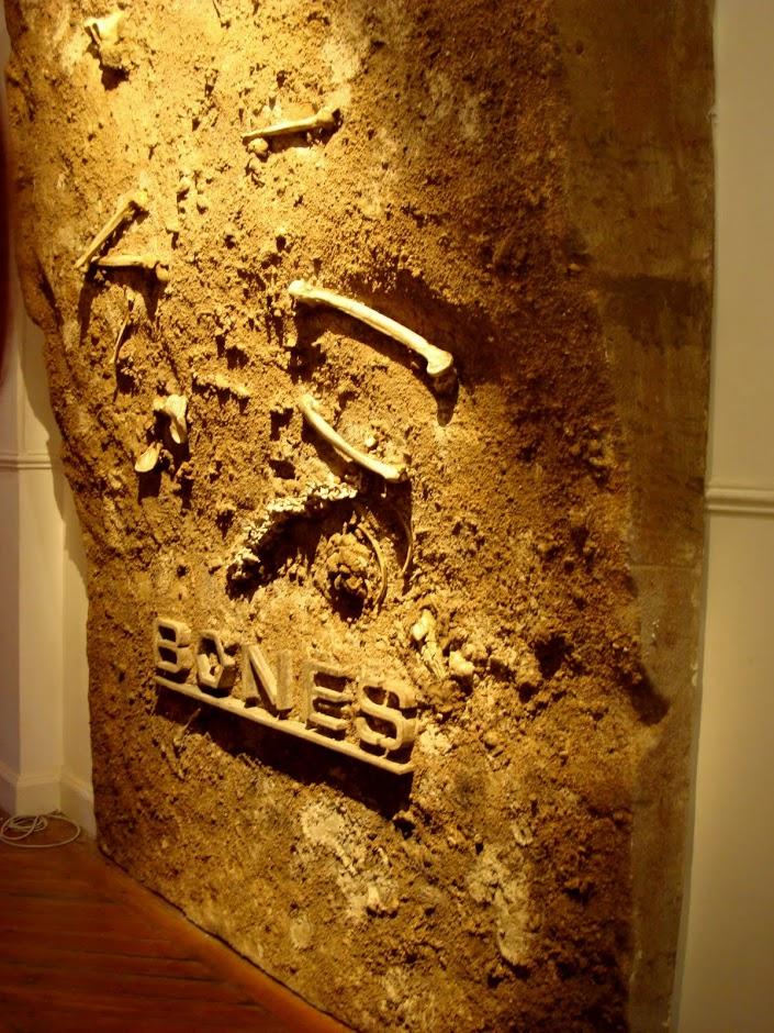 Terrenos, Tierras, huesos, yacimiento para pared